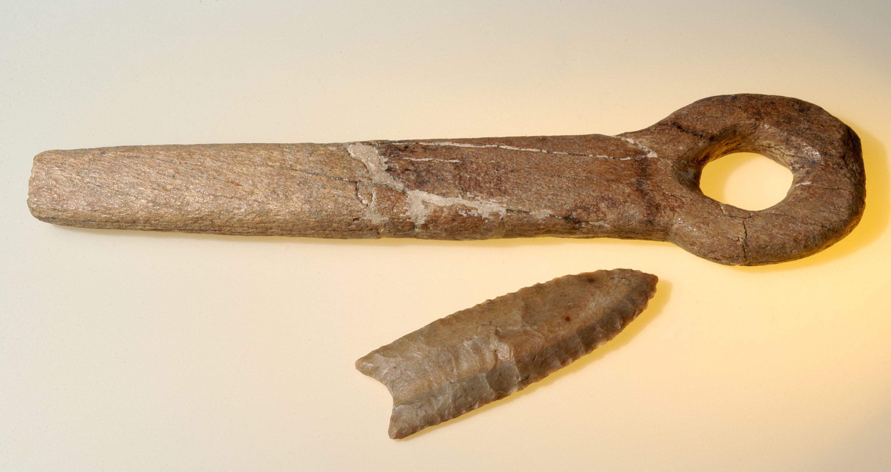 Clovis Bone Shaft Wrench, Cochise County, Arizona, about 13,000 years old