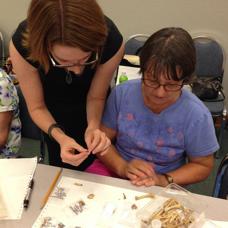 people examining animal bone from a previous summer camp